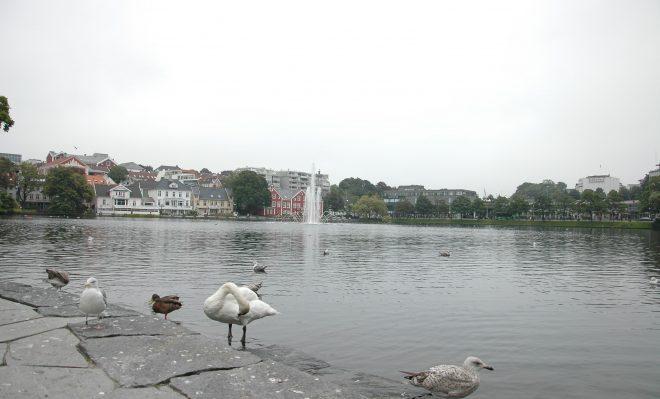 Lago Stavanger