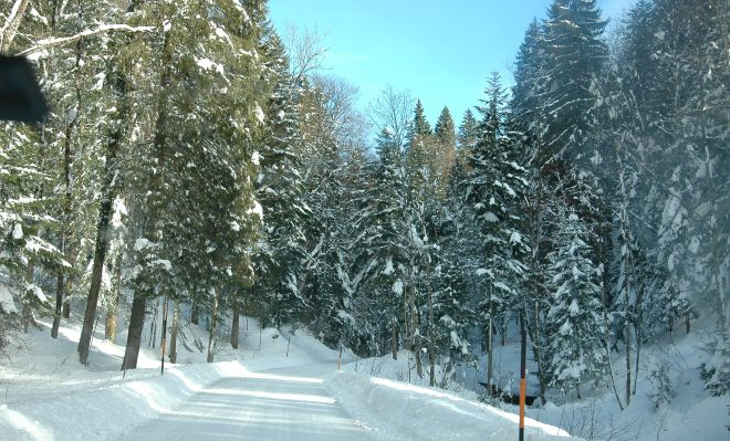 Camino de Hallstat