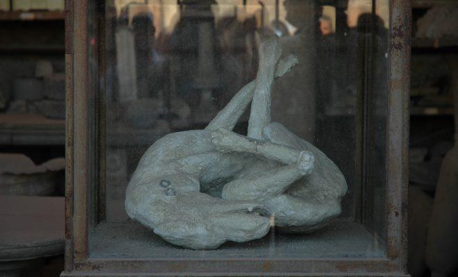 Perro fosilizado