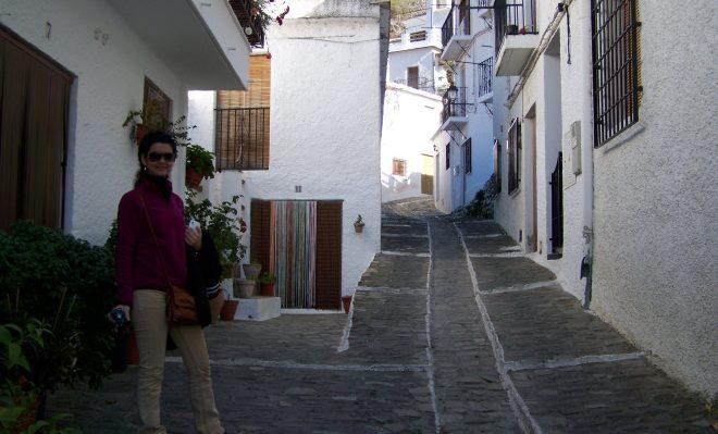 Detalles de una calle de Pampaneira