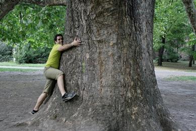 Este árbol es muy grande, ¿no?