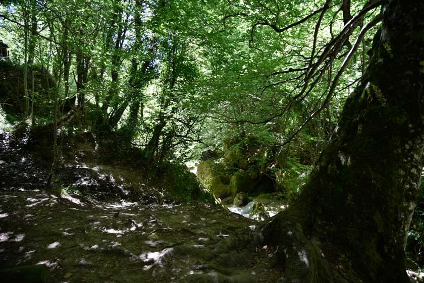 Uno de los senderos del Urederra