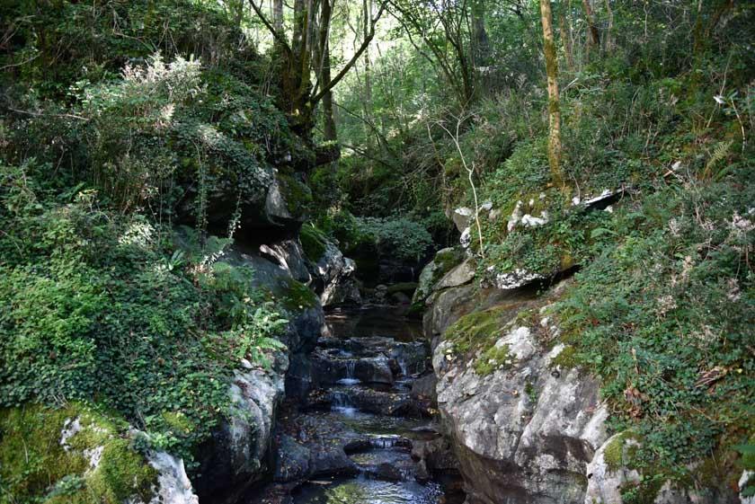 El agua riega el entorno