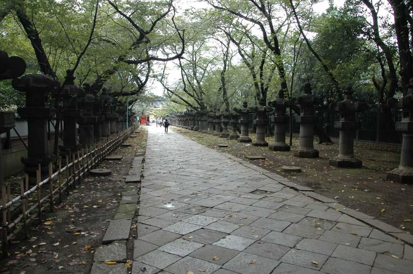 Camino de llegada al Santuario Toshogu