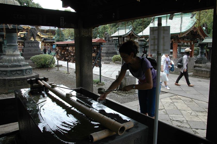Limpiando el alma en el Santuario Toshogu