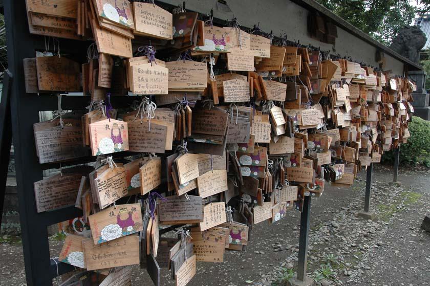 Deseos en el Santuario Toshogu