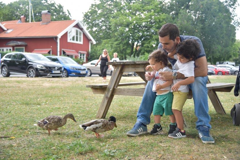 Daniel y Hugo jugando con los patos de Sigtuna