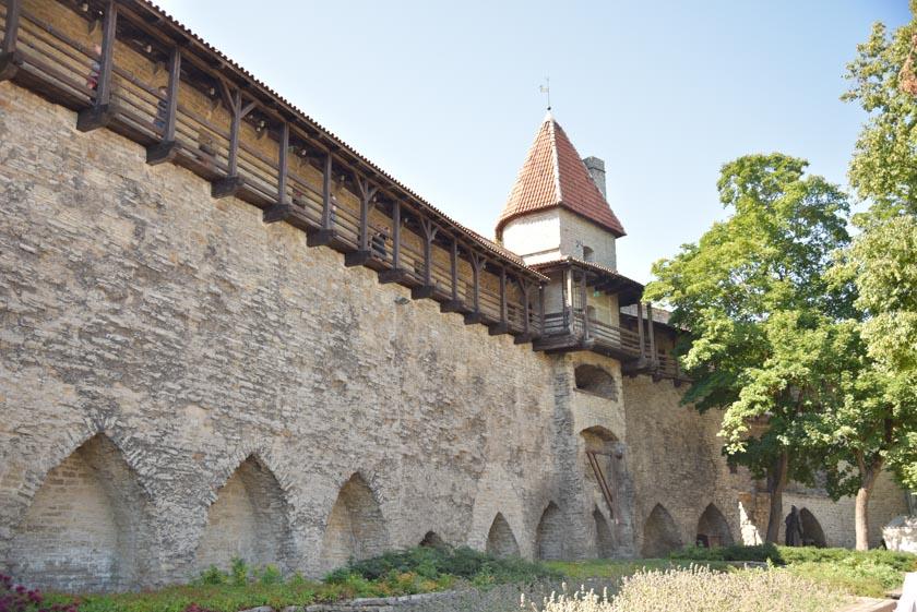 Nos encantó pasear por las murallas de Tallin
