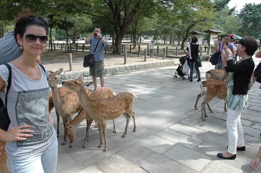 Laura posando con las famosos ciervos de Nara
