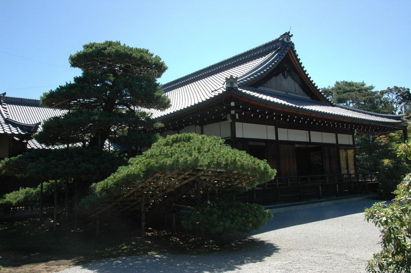 Árboles de Kinkakuji