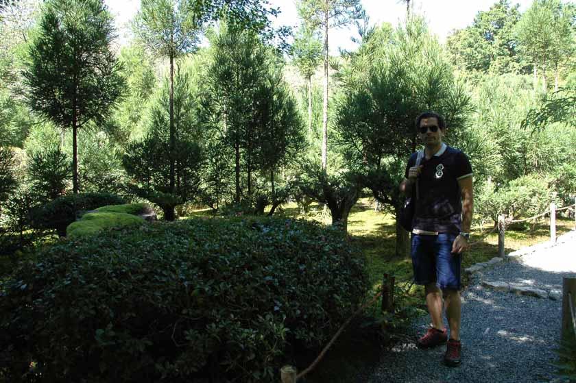 Precioso jardín en Ryoanji