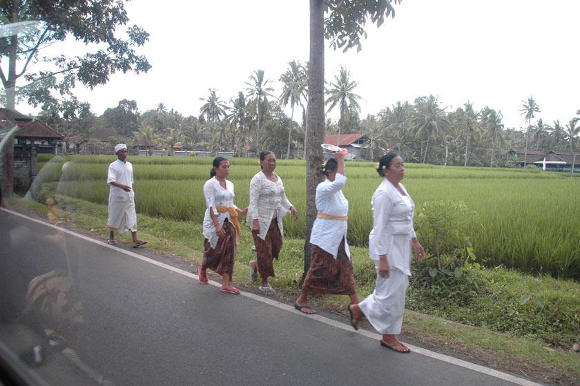 Estampa típica de Bali