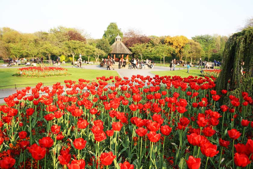 Conociendo el parque de Saint Stephen's Green