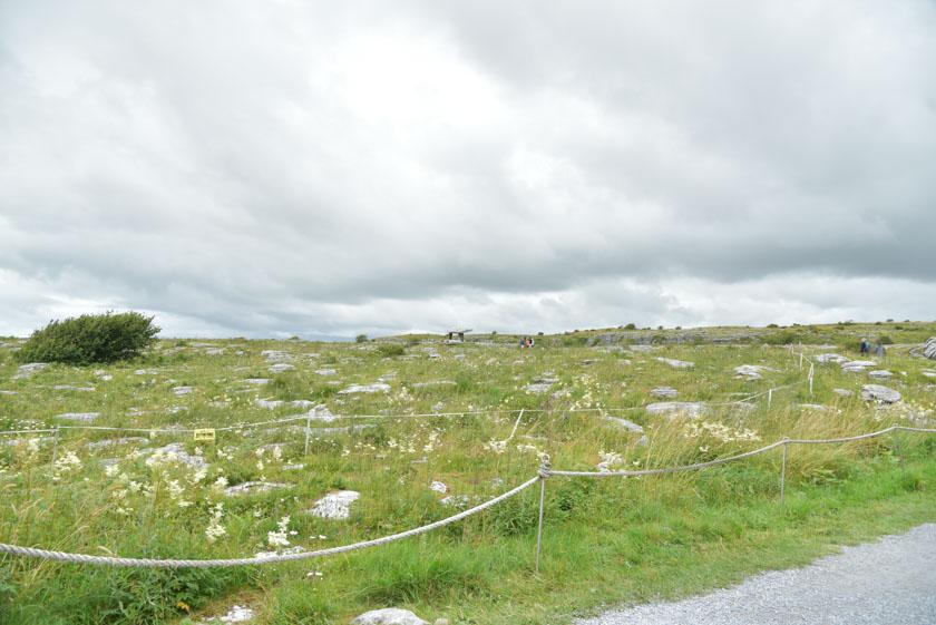 A lo lejos ya vemos el dolmen de Poulnabrone