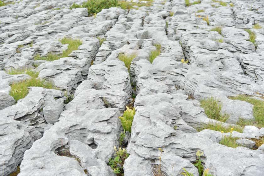 Detalles de la zona del The Burren