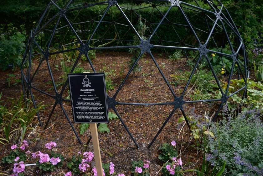 Visita al jardín venenoso de Blarney