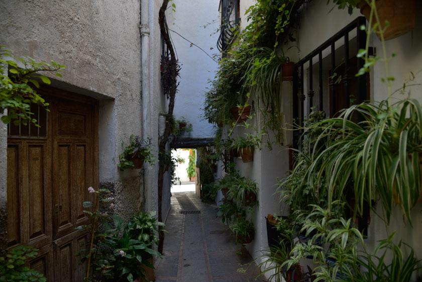 Conociendo el barrio Hondillo de Lanjarón