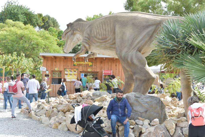 En DinoPark Algar, también existe un pequeña bar