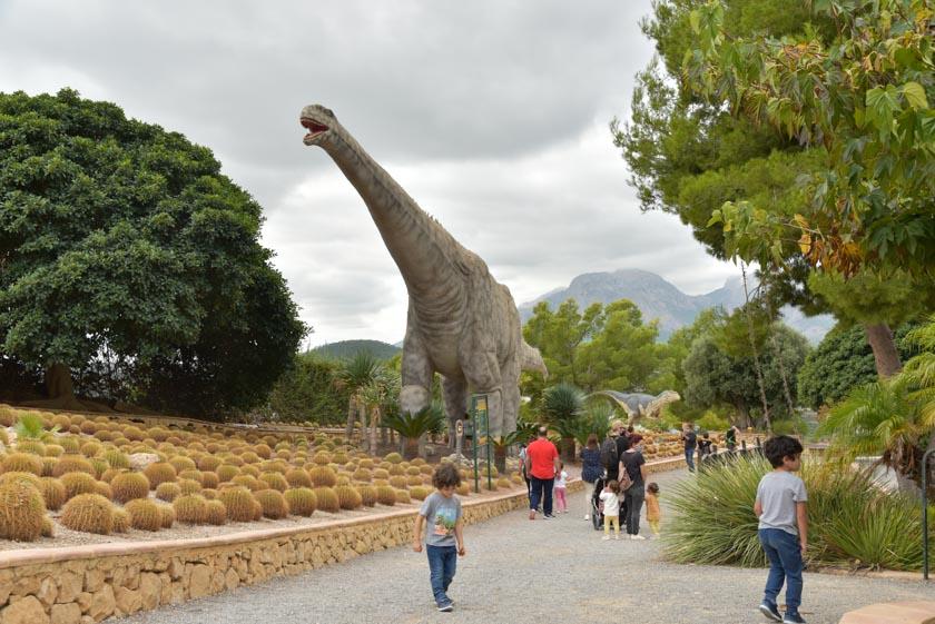 En DinoPark Algar podemos encontrar multitud de plantas!!
