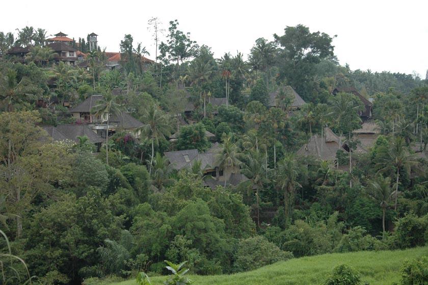 Casas totalmente integradas en la naturaleza
